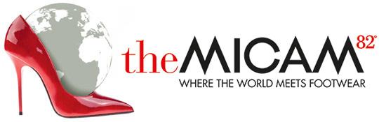 logo theMICAM
